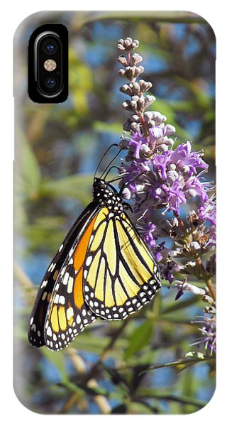 Monarch On Vitex IPhone Case