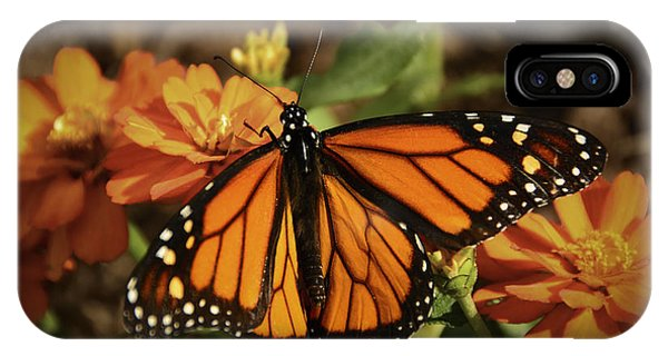 Monarch Spotlight. IPhone Case