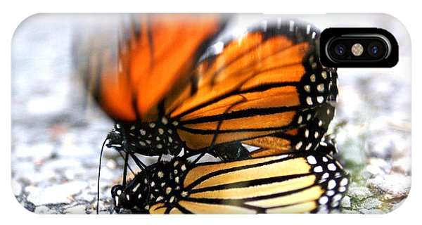 Monarchs In Love IPhone Case