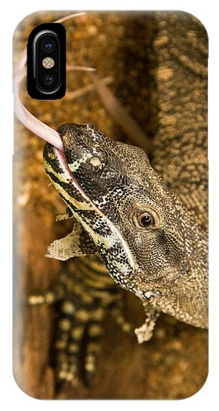 Monitor Lizard Phone Case by Debbie Cundy
