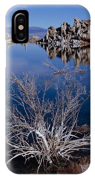 Mono Lake Salt Bush IPhone Case