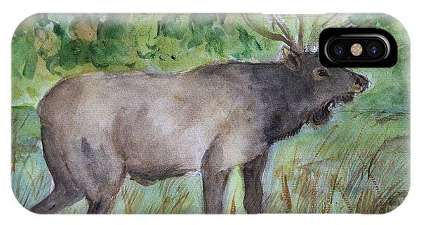 Montana Elk IPhone Case