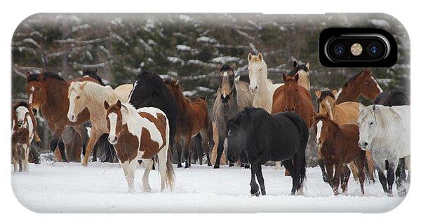 Montana Herd IPhone Case