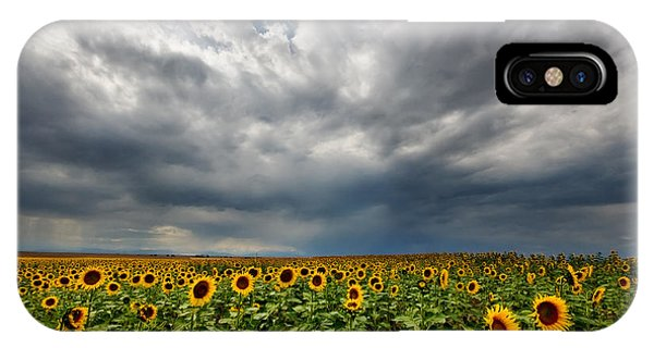 Moody Skies Over The Sunflower Fields IPhone Case