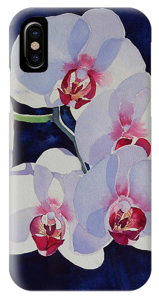 Moolight Dance IPhone Case