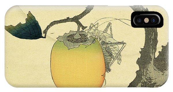 Grasshopper iPhone Case - Moon Persimmon And Grasshopper by Katsushika Hokusai