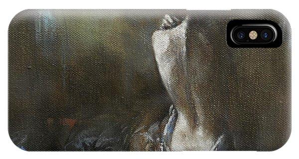 Moon Shadows IPhone Case