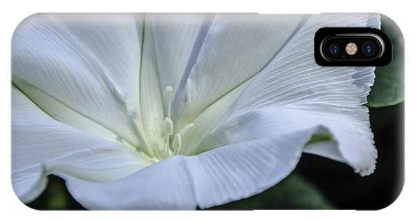 Moonflower 1 IPhone Case