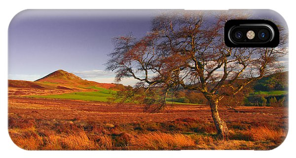 Moorland Tree North Yorkshire IPhone Case