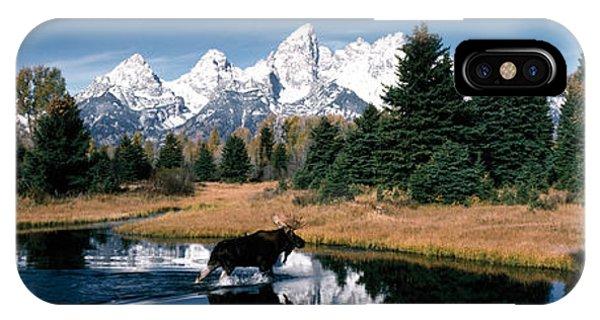 Moose & Beaver Pond Grand Teton IPhone Case