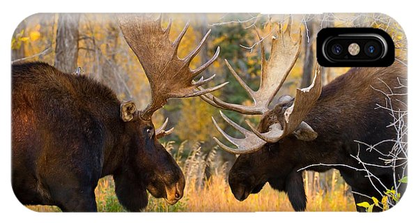 Moose Battle IPhone Case