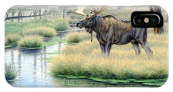 Yellowstone iPhone Case - Moose Country by Paul Krapf