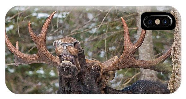 Moose Teeth IPhone Case