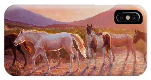 More Than Light Arizona Sunset And Wild Horses IPhone Case