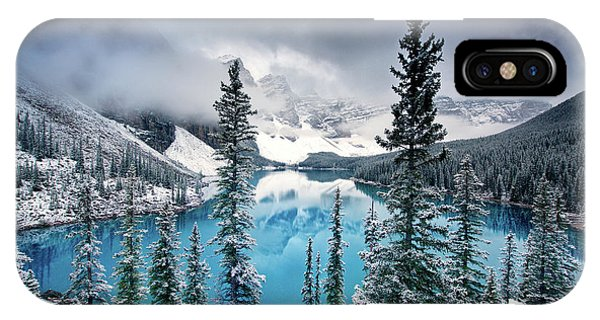 Fir Trees iPhone Case - Morning Blues by Trevor Cole
