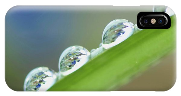 Morning Dew Drops IPhone Case