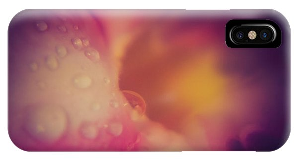 Morning Dew - East IPhone Case