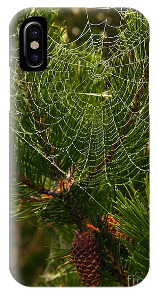 Morning Dew On Cobweb IPhone Case