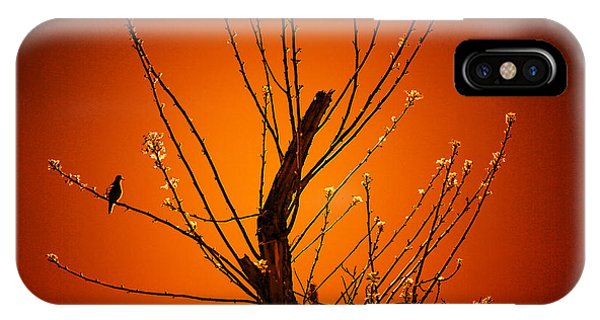Morning Dove Sunrise IPhone Case