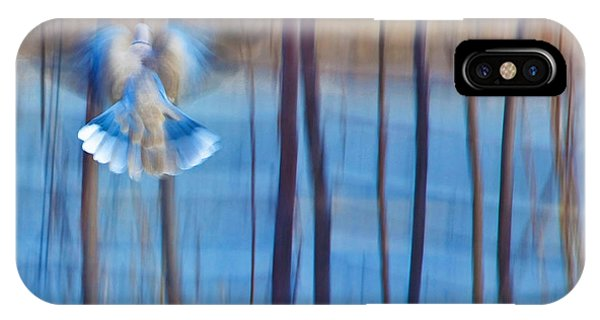 In Flight iPhone Case - Morning Dove by Theresa Tahara