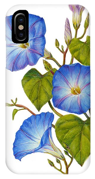 Morning Glories - Ipomoea Tricolor Heavenly Blue IPhone Case