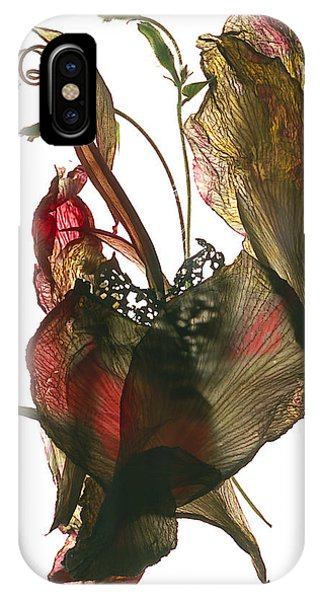Floral Arrangement iPhone Case - Morning Glory Canna Heart by Julia McLemore