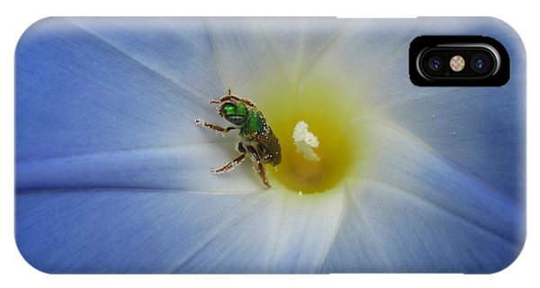 Morning Glory Visitor 1 IPhone Case