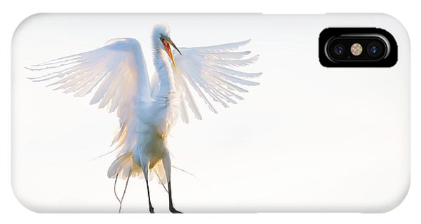 Egrets iPhone Case - Morning Landing by Phillip Chang