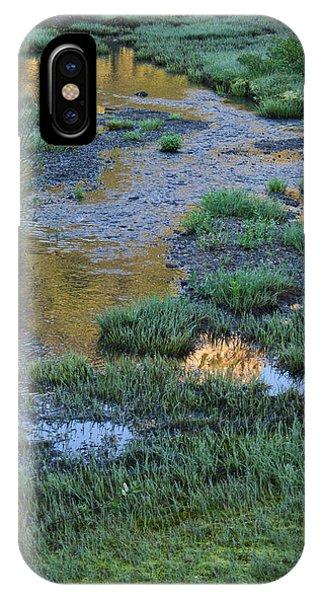 Morning Magic Tipsoo Lake Wa IPhone Case