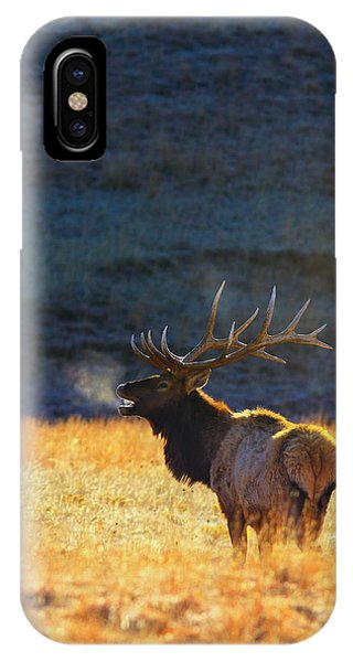 Beautiful iPhone Case - Morning Breath by Kadek Susanto