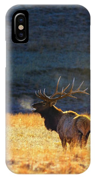 Yellowstone iPhone Case - Morning Breath by Kadek Susanto