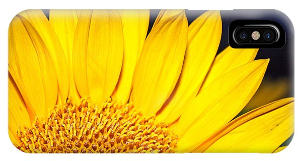 iPhone Case - Morning Sunshine by Kelly Holm