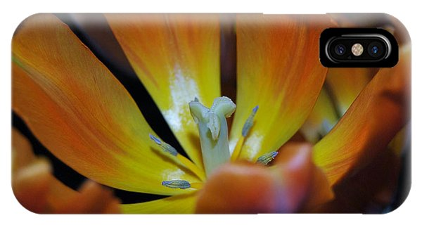 Morning Tulip Phone Case by Vallee Johnson
