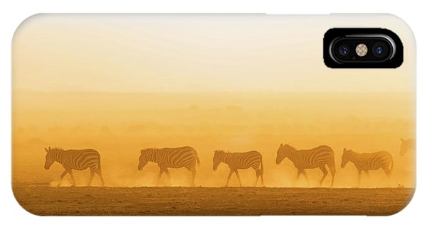 Dust iPhone Case - Morning Walk by Hao Jiang