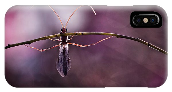 Macro iPhone Case - Morning Workout by Fabien Bravin