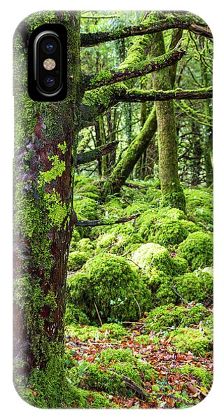 iPhone Case - Moss Covered Trees In Killarney by Jonathan Irish