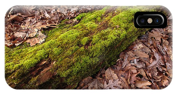 Moss On Pine IPhone Case