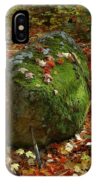 Mossy Rock IPhone Case