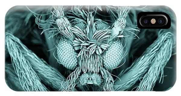 Drain iPhone Case - Moth Fly by Kevin Mackenzie / University Of Aberdeen / Science Photo Library