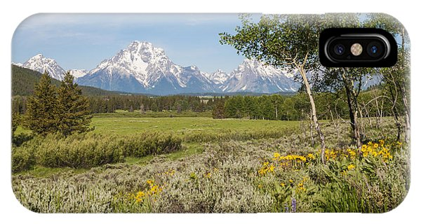 Mount Moran View IPhone Case