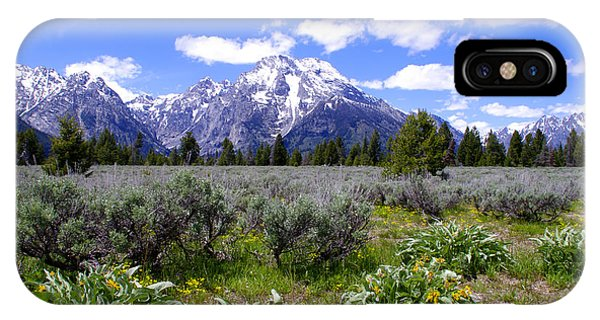 Mount Moran Wildflowers IPhone Case
