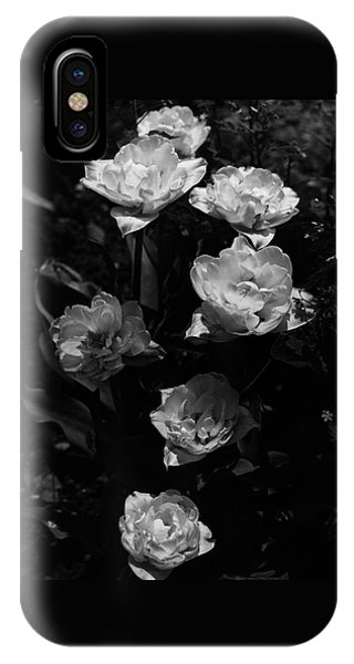 Mount Tacoma Tulips IPhone Case
