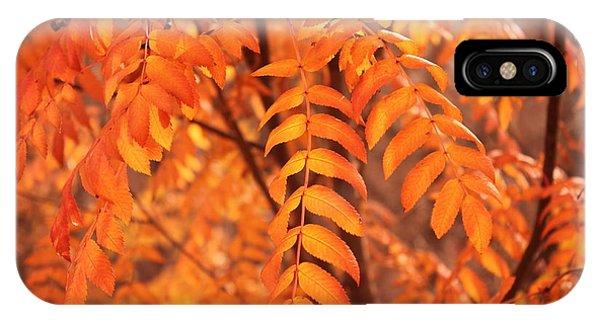 Mountain Ash Leaves - Autumn IPhone Case