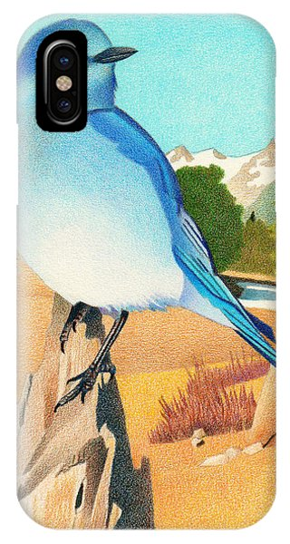 Mountain Bluebird IPhone Case