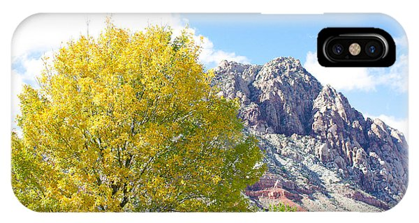 Mountain Fall IPhone Case