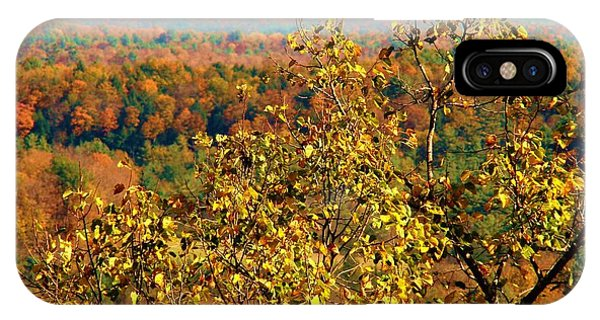 Mountain Foliage Series 012 IPhone Case