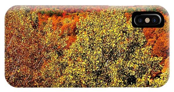 Mountain Foliage Series 016 IPhone Case