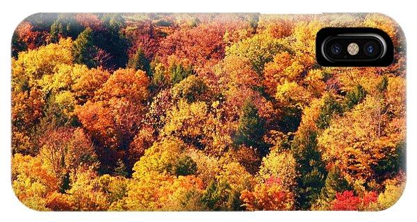 Mountain Foliage Series 054 IPhone Case