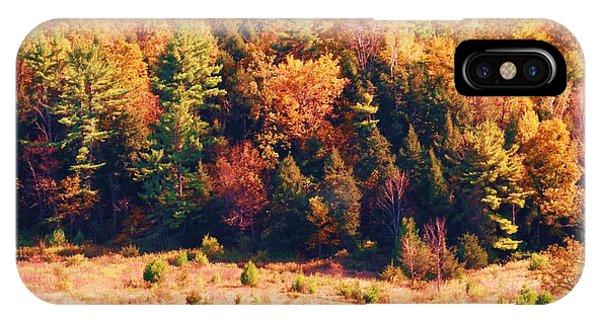 Mountain Foliage Series 057 IPhone Case