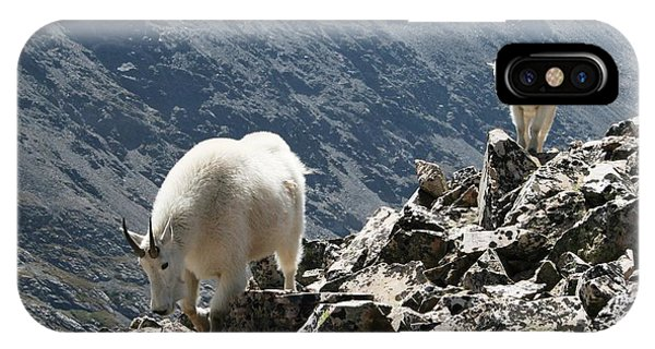 Mountain Goats 2 IPhone Case